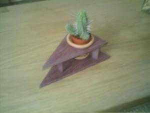 porte cactus triangle présentation